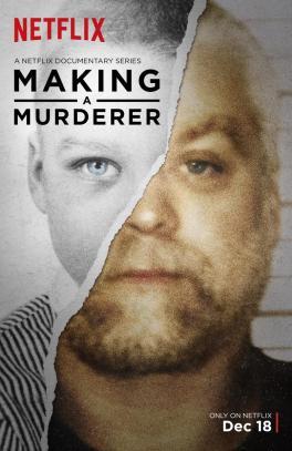 making_a_murderer_tv_series-769847931-large